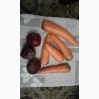 Продам свеклу и морковь. С склада от поставщика