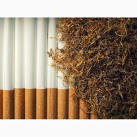 Куплю табак лапшой крепки и средней крепости