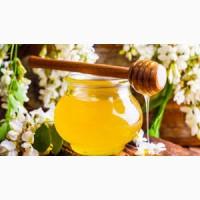 Куплю сортовий мед оптом НЕ соняшник по всій Україні