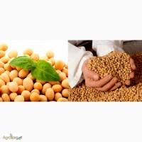 Производим закупку бобовых культур ( СОЮ ) с хазяйств и эливаторов постоянно Дорого