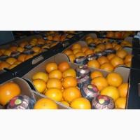 Продаем апельсины мандарины