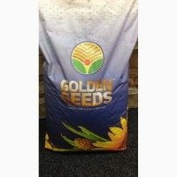 Семена кукурузы Манифик Golden Seeds