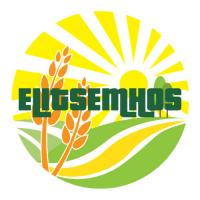Пропонуємо насіння ярових культур- Коріандр, льон, гірчиця, Херсонська обл
