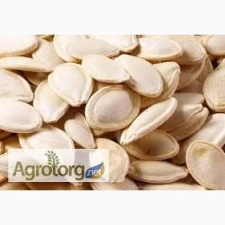 Продам гарбузове насіння Украинськая многоплодная