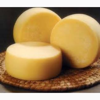 Продукт сырный твердый Россия, опт