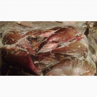 Продам свежемороженную речную рыбу-Лещ(0, 9-1, 5кг/шт), лещ мелкий(0, 4-0, 9кг/шт), синец