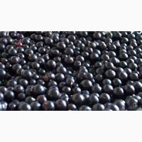 Черника, чорниця, ягоды черники