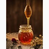 Куплю мед, Одесская область