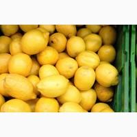 Лимоны хорошего качества, крупный опт