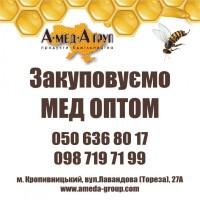 Закуповуємо мед оптом АМЕДА ГРУП Кіровоградська, Черкаська, Полтавська, Миколаївська обл
