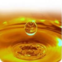 Продам масло подсолнечное рафинированное FOB