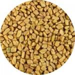 Чай Хильба, Желтый чай, семена Пажитника из Египта