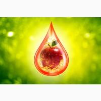 Завод Интерджус (г.Марганец) покупает яблоки на переработку в неограниченном количестве