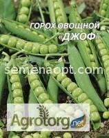 Продам семена овощного горха 20грн/кг