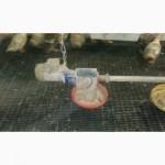 Продам пластиковые полы для птицеферм