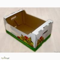 Огуречный ящик Купить