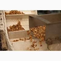 Закупка 1/2 ядра грецкого ореха в Украине