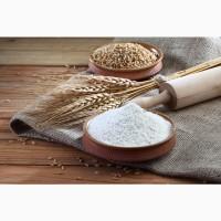 Продам Мука пшеничная в/с 1, 10, 25, 50кг Днепр