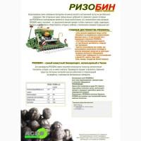 Препарат для инокуляции семян бобовых растений РИЗОБИН