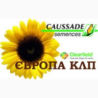 Гибрид подсолнечника пол Евролайтинг плюс Европа КЛП- Caussade Semences(Франция)