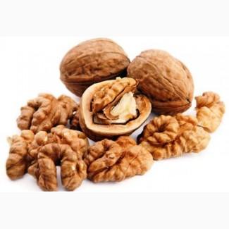 Покупаю ядро грецкого ореха и семена тыквы разных сортов и фракций, Западная Украина