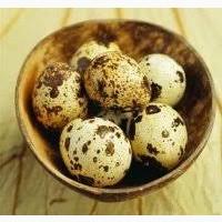 Продам яйцо инкубационное перепелинное Техасец