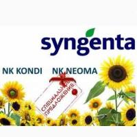 Подсолнечник посевной Syngenta NK NEOMA, NK KONDI урожая 2015 года, Г. Киев