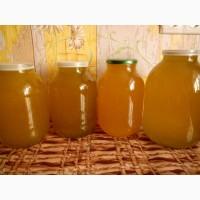 Дешево продам свежий мед подсолнечника, урожай 2018 года