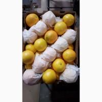 Апельсин - импорт из ЮАР