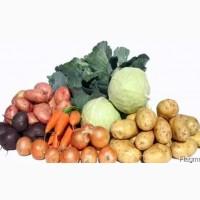 Овощи борщового набора крупным и мелким оптом со склада в Харькове