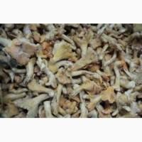 Куплю мороженные грибы оптом