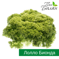 Продаем салаты ФХ Пан Билан