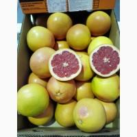Грейпфрут - импорт от производителя ЮАР