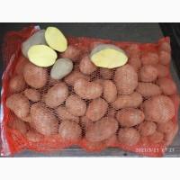 Картофель товарный, качество, есть доставка, объем