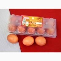 Яйцо куриное в оптом С-2