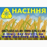 Продаем семена, горох, соя, просо, овес, пшеница, ячмень, кукуруза, подсолнечник, гречиха
