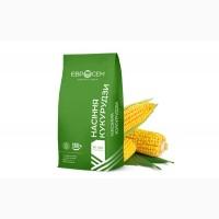 Акційна ціна на насіння кукурудзи ДН Орильський