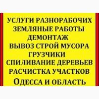 Уборка, планировка участка, спил дерева, демонтажные работы, вывоз мусора Одеса