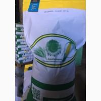 Семена кукурузы ДН Днипро (ФАО 300). Урожай 2020