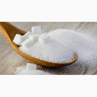 Сахар с завода на экспорт и по Украине