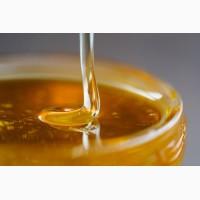 Продам мед, сонях 300 кг 40 грн за кг