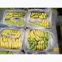 Продам плоды банана