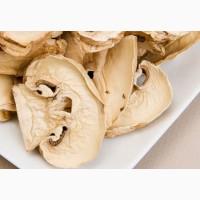 Продам сушеные грибы шампиньоны