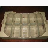 Гофролоток ящик евротара для 10 пластиковых пинеток 500г упаковка для ягод клубники малины