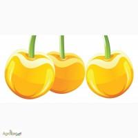 Жёлтая Черешня / Ягода