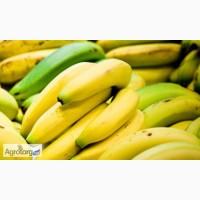 Акция на бананы до конца августа