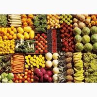Ищем поставщиков фруктов в сетевые магазины на регулярной основе