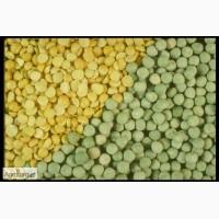 Куплю горох желтый зеленый половинки отходы