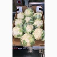 Продаем цветную капусту