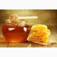 Куплю мед в Запорожской обл Дорого